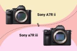 Sony a7RII vs A7RIII