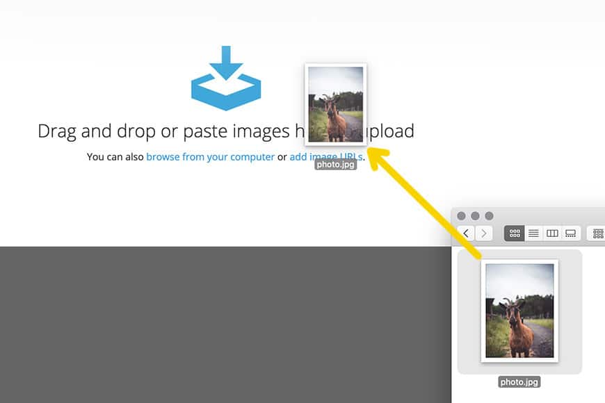 Screen shot showing how to drag and drop photos onto ImgBB