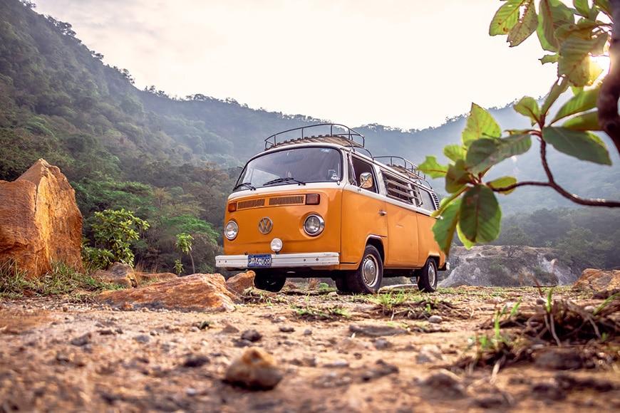 VW van in jungle setting