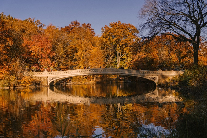 Bridge with reflection in water