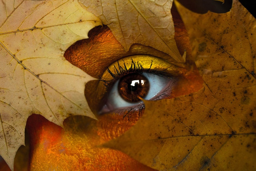 Fall eye makeup with leaves