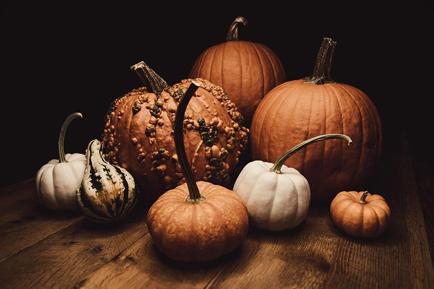 Variety of pumpkins still life
