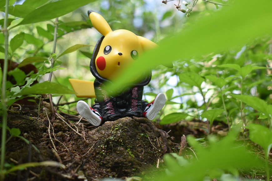 Pokemon pikachu hiding in the bushes